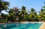 Villa for sale in Cavelossim — Wild Ayanna with swimming pool | 2134  Wild Ayanna (#2134)  Goa, South, Cavelossim - Territory, swimming pool